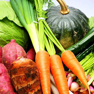 旬のお野菜+産みたて濃厚玉子+お米5kgセット