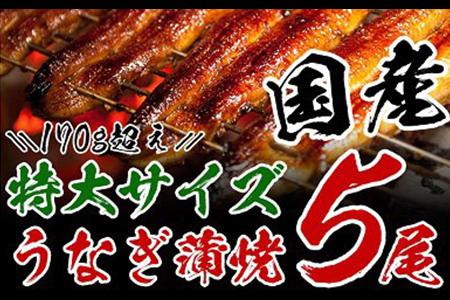 うなぎ蒲焼(長焼特大サイズ5尾入)